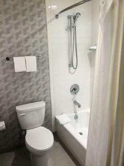 Average toilet and bathtub